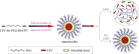 D:\xwu\Nano Biomedicine and Engineering\Articles for production\排版\9(4)\0069\pre pub\bzst4\bzst2.jpg