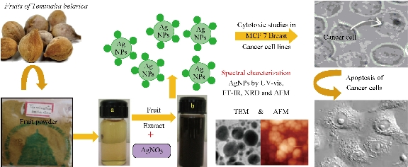 Multifunctional Silver Nanoparticles by Fruit Extract of