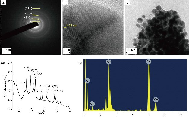 D:\xwu\Nano Biomedicine and Engineering\Articles for production\排版\2020\12(1)\2020 12(1)\V12N1JPG\12(1).10\spt3.jpg